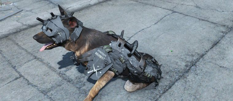 Dogmeat Minutemen Armor