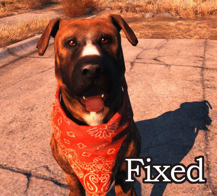 Собака рейдеров FIXED