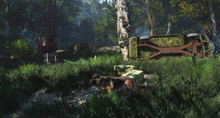 Resurrection Forest Edition